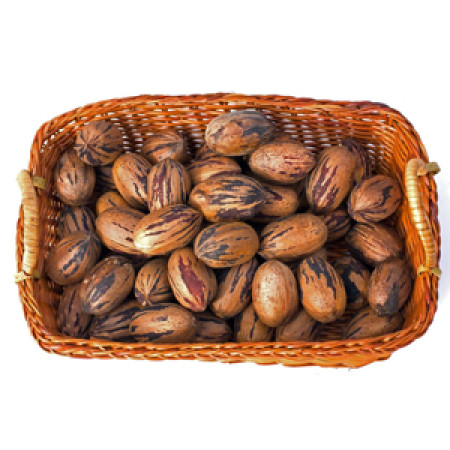 Pecan Nuts in Shell